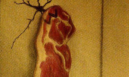 El Vino consciente y el filete ofensivo (parte II)