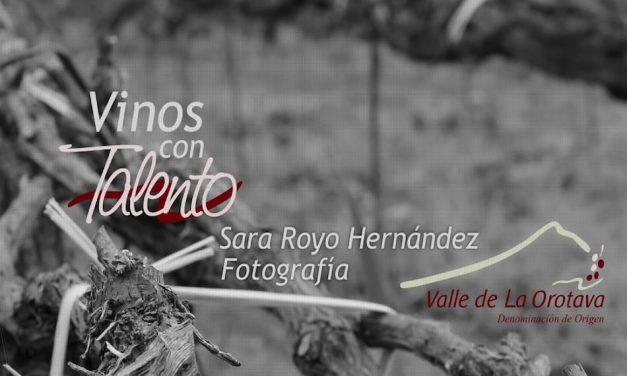 LAS DENOMINACIONES DE ORIGEN DE CANARIAS: DO VINO VALLE DE LA OROTAVA (7)