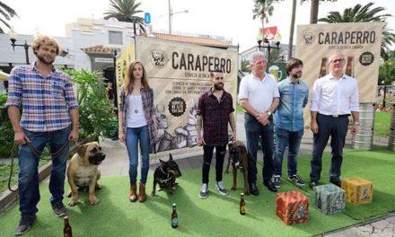 TROPICAL FEST TENDRÁ COMO PROTAGONISTAS LA MÚSICA, LA CERVEZA Y EL OCIO